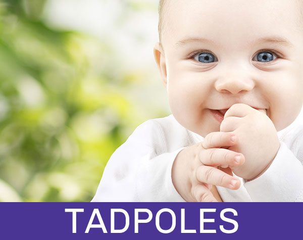 Tadpoles for 0-mobile